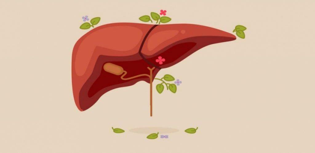 کبد چرب یکی از بیماری های شایع قرن بیست و یکم که عنوان معروف ترین بیماری در بین افرادی از سنین مختلف و همچنین افرادی با گرایشات غذایی و با وزن ها و توده های بدنی مختلف میباشد.