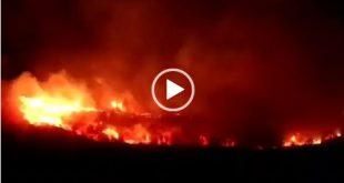 به گزارش سایت خبری اقتصاد نیوز آتش سوزی در اراضی جنگلی استان گیلان باعث ایجاد یک حریق گسترده شده است که ۲۰ هکتار از اراضی جنگل های پره سر شهرستان رضوانشهر در استان گیلان را در بر گرفته است است و به علت وزش باد و جریانات گرم هوایی بر وسعت آتش سوزی افزوده شده است. بعد از وقوع آتش سوزی در جنگل های پر سر و نارنج دول استان گیلان با همراهی مردم محلی و منطقه و حضور به موقع تیم های آتش نشانی تا حدودی از وسعت آتشسوزی کاسته شده و از گسترش آن به مناطق دیگر تا حدودی جلوگیری به عمل آمده است.