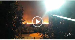 آتش سوزی گسترده در بوستان ولایت تهران که عصر امروز به وقوع پیوست بدون هیچگونه مصدومیتی مهار شد