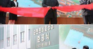 هفته گذشته اخباری مبنی بر مرگ کره شمالی بر اثر سکته مغزی در رسانه ها منتشر شد ولی دولت کره شمالی تا کنون واکنشی به این خبر نشان نداده است.