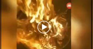 در یک ویدئو جدید از امیر تتلو او موهایش را کوتاه کرد و در آتش انداخت !