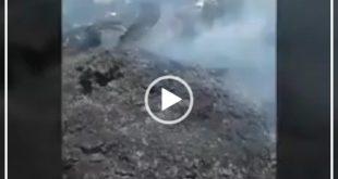 متاسفانه بر اثر آتش سوزی در طویله گوسفندان در روستای تکل حسن شهرستان رودبار در جنوب استان کرمان تعدادی از گوسفندان بر اثر این آتش سوزی تلف شدند