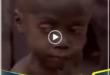 هوپ(امید)،کودک نیجریه ای که خانواده اش بخاطر باور خرافی مبنی بر اینکه جادو شده، رهایش کرده بودند. و یک فعال حقوق کودک(دانمارکی) او را -در حالیکه بدنش کرم زده و عفونی بود و از زباله ها تغذیه میکرد- یافت و تصویر او در آنزمان جهانی شد، حالا...!