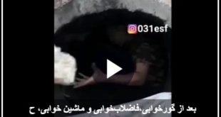 بعد از انتشار خبرهایی در خصوص گورخوابی و فاضلاب خوابی در برخی از شهرها از قبیل تهران انتشار ویدئویی در فضای مجازی در خصوص لوله خوابی مردم محروم یکی از مناطق اصفهان باعث ایجاد واکنش های بسیاری در فضای مجازی شد