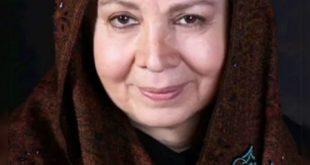 شمسی فضل الهی بازیگر و هنرپیشه پیشکسوت سینما و تلویزیون کشور می باشد که فعالیت هنری خود را از سالهای قبل از انقلاب آغاز کرد و پس از انقلاب نیز با حضور در سریال «امیرکبیر» برای اولین بار در تلویزیون ظاهر شد