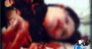 صبح روز گذشته در حادثهای هولناک و دلخراش که میتوان آن را بیرحمانه ترین قتل شهرستان بهارستان یاد کرد، سر یک مادر به همراه فرزند معصومش توسط افراد ناشناس بریده شده است