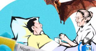 انتشار خبرهایی از یک ویروس کشنده و مهلک دیگر به نام نیپا جهان را در شک و ناباوری فرو برد