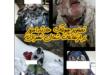 حوادث مختلف امروز برای کوهنوردان در ارتفاعات شمال تهران در نهایت با ۲ نفر کشته و دو نفر مصدوم و یک نفر مفقودی در حال پیگیری توسط گروههای امداد و نجات است
