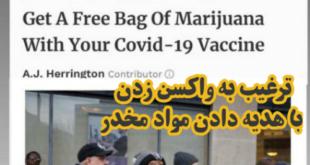 یک شرکت آمریکایی واقع در واشنگتن دی سی برای ترغیب مردم جهت واکسن زدن به هر نفر یک بسته مواد مخدر هدیه می دهد