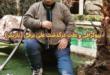 علی برقی بازیگر سینما و تلویزیون امروز در تاریخ ۲۴ بهمن ۹۹ درگذشت در ادامه با زندگینامه این هنرمند با ما همراه باشید