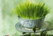منشأ و زمان پیدایش نوروز، به درستی معلوم نیست. برخی از روایتهای تاریخی، آغاز نوروز را به بابلیان نسبت میدهد. بر طبق این روایتها، رواج نوروز در ایران به سال ۵۳۸ق.م یعنی زمان حمله کوروش بزرگ به بابل بازمیگردد