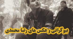 رضا محمدی بازیگر و کارگردان جوان ایرانی میباشد که متولد سال ۱۳۶۵ می باشد در ادامه با بیوگرافی این هنرمند با ما همراه باشید