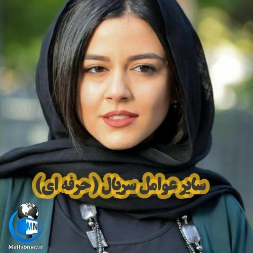 اسامی و بیوگرافی بازیگران سریال (حرفه ای) + خلاصه داستان و زمان پخش