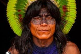 کشف قبیله ای به نام کایاها در جنگلهای آمازون موجب شگفتی بسیاری از دانشمندان و و مردم شناس های جهان شد،این قبیله بر روی درختان زندگی می کنند