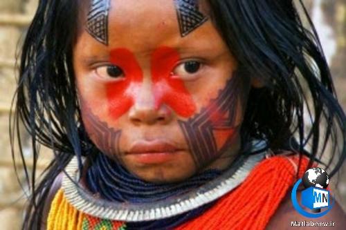 کشف (کایاها) قبیله ای که بر روی درختان جنگل آمازون زندگی می کنند + عکس