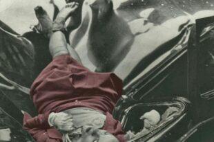 در ماه مه ۱۹۴۰ یک صفحه کامل از مجله لایف به عکس یک دانشجو به نام رابرت وایز اختصاص داده شد و به عنوان یکی از مشهورترین پرتره های خودکشی جهان باقی ماند