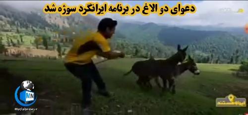 ویدئو/ دعوای ناگهانی دو الاغ در برنامه ایرانگرد سوژه شد!