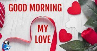 دل را به صفای صبح پیوند بزن، بر پایِ شب سیاهِ غم ، بند بزن، هرچند که دلسوختهای، چون خورشید بر شوخی روزگار ، لبخند بزن. سلام؛ صبح بخیر عشقم
