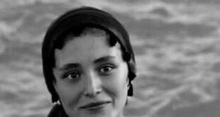 انتشار عکسی از فرشته حسینی بازیگر سینما و تلویزیون ایرانی افغانستانی به همراه آهنگی از هیچکس از طرف نوید محمدزاده واکنشهای مختلفی را به دنبال داشت