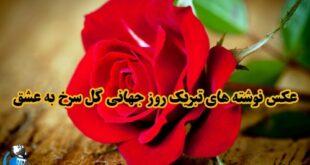 12 jun روز جهانی گل سرخ است. گل سرخ نماد عشق است و در کنار محبوب خود نشان از دوست داشتن معشوقه دارد