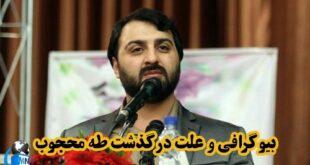 طاها محجوب فرزند علیرضا محجوب یکی از نمایندگان مجلس شورای اسلامی می باشد که چندی پیش به صورت خیلی ناگهانی در گذشت با بیوگرافی این شخص با ما همراه باشید
