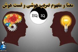 هوش یکی از جذابترین و مهم ترین فرایندهای روانی است و زمانی که از هوش سخن به میان می آید، همه کلمه آی کیو را درنظر می گیریم
