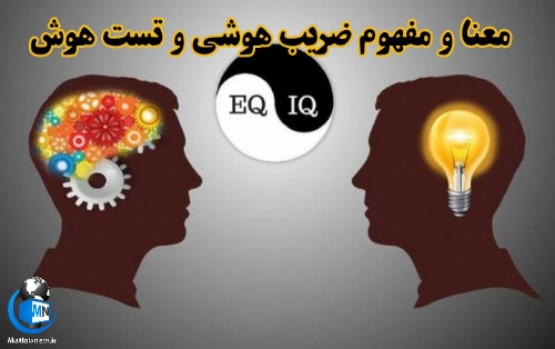 معنا و مفهوم ضریب هوشی و تست هوش