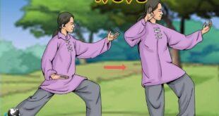 تای چی، حرکاتی که ریشه در طب چینی با قدمتی هزاران ساله که تلفیقی از هنرهای رزمی و مدیتیشن است. که به بهبود سلامت جسمی و آرامش روانی کمک می کند