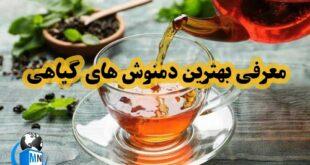 در طب سنتی و ایرانی بسیاری از دمنوش های گیاهی میتوانند جایگزین داروها و درمان های شیمیایی باشند در ادامه به بررسی خواص و کاربرد چند نوع دمنوش گیاهی می پردازیم