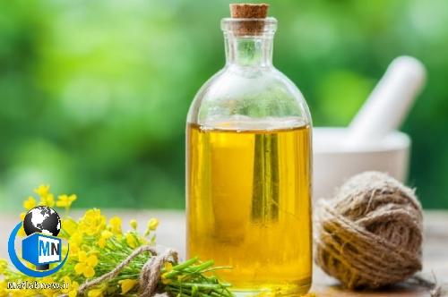 معرفی بهترین روغن های گیاهی معجزه آور برای مو + آشنایی با آروماتراپی برای مو