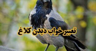 بسیاری از معبران تعابیر مختلفی در رابطه با دیدن کلاغ، پرواز کردن و خوردن گوشت این پرنده آورده اند که در ادامه مطلب به بیان آنها می پردازیم