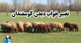 در رابطه با دیدن گوسفند در عالم رویا بسیاری از محققان تعابیر مختلفی از جمله رزق و روزی حلال آورده اند در ادامه این مطلب به تعبیر کامل این رویا میپردازیم