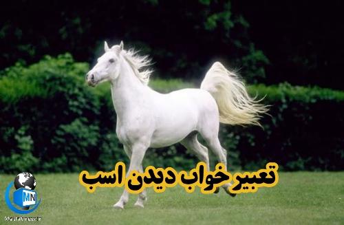 تعبیر خواب دیدن (اسب) چیست؟ + اسب سواری و اسب سفید چه تعبیری دارد؟