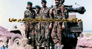 سرتیپ محمد علی صفا، معروف به شکارچی تانک در جهان توانستند با کمک کماندوهای نیروی دریایی بوشهر 164 تانک دشمن را منهدم کنند و نیروهای عراقی را مجبور به عقب نشینی کنند