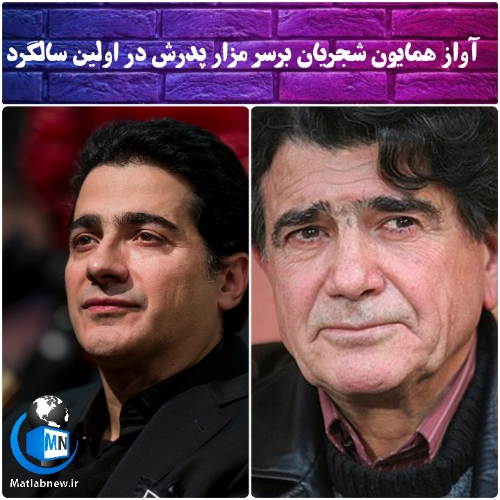 فیلم/ آواز زیبای «همایون شجریان» بر سر مزار پدر در اولین سالگرد درگذشت استاد محمدرضا شجریان